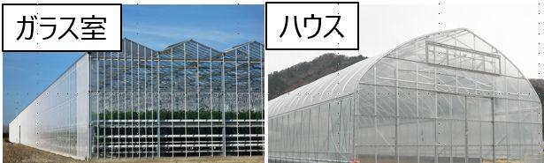 2020年 養液栽培や植物工場の普及率に関する最新データ①