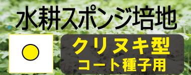 養液 水耕栽培用 スポンジ培地