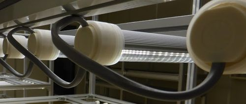 植物工場の照明における比較・検討ポイント